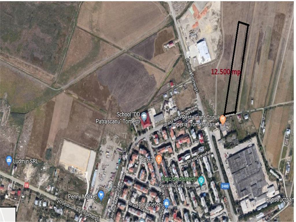 12.500 mp teren in Tomesti