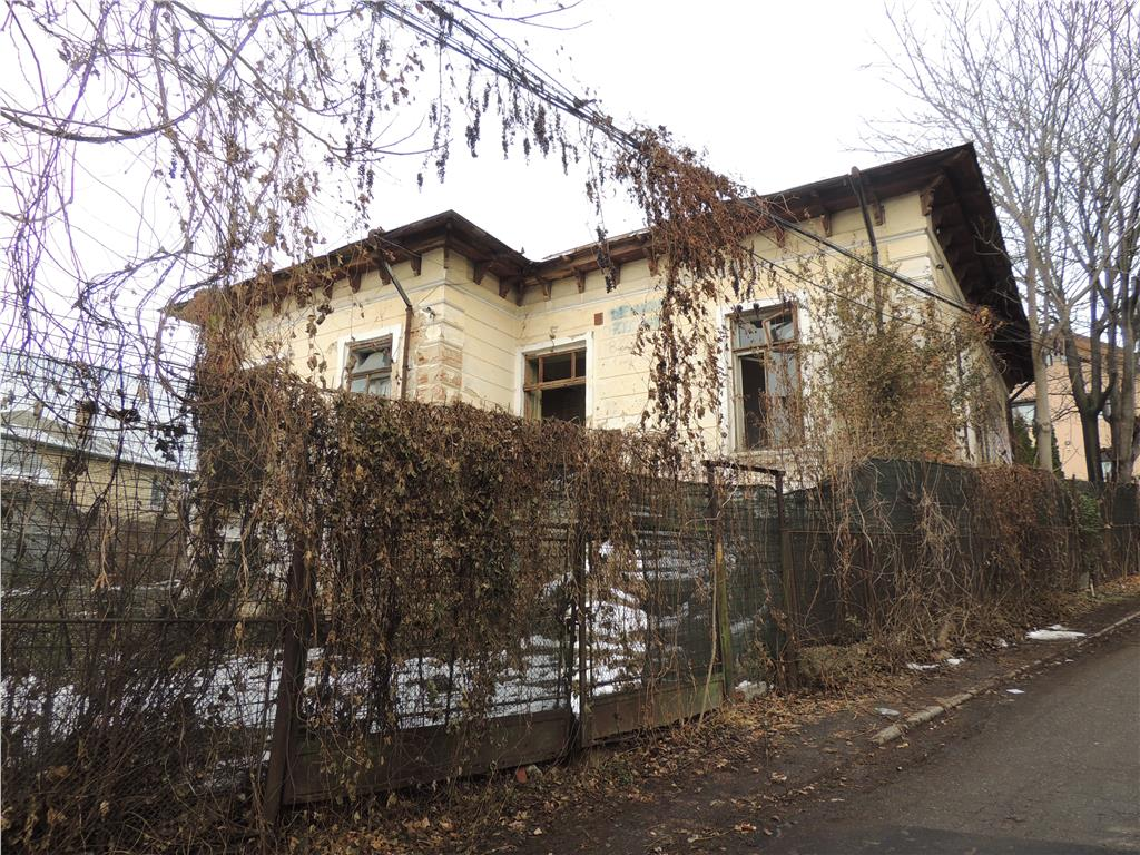 Casa de poveste Copou