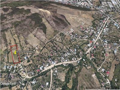 teren 20.000 mp, in Tomesti