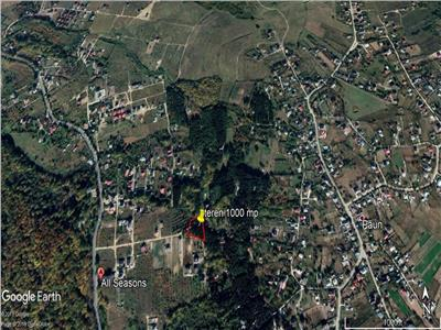 teren 1000 mp, ideal pentru casa in Bucium